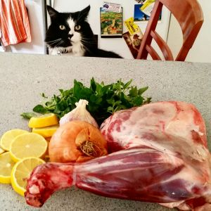 Photo of lamb Kleftiko and cat.